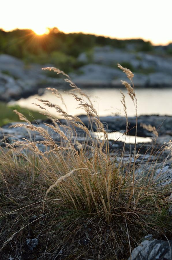 Słońce sety za skałami obraz stock