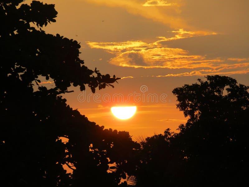 Słońce ustawiający podczas letnich dni obrazy stock