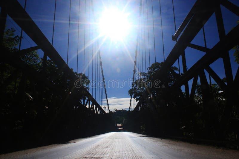 Słońce wysoki w górę nieba w po środku kabli od wielkiego metalu mostu z drzewami fotografia stock