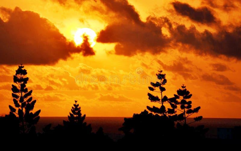 Słońce wzrost na oceanie indyjskim zdjęcie royalty free
