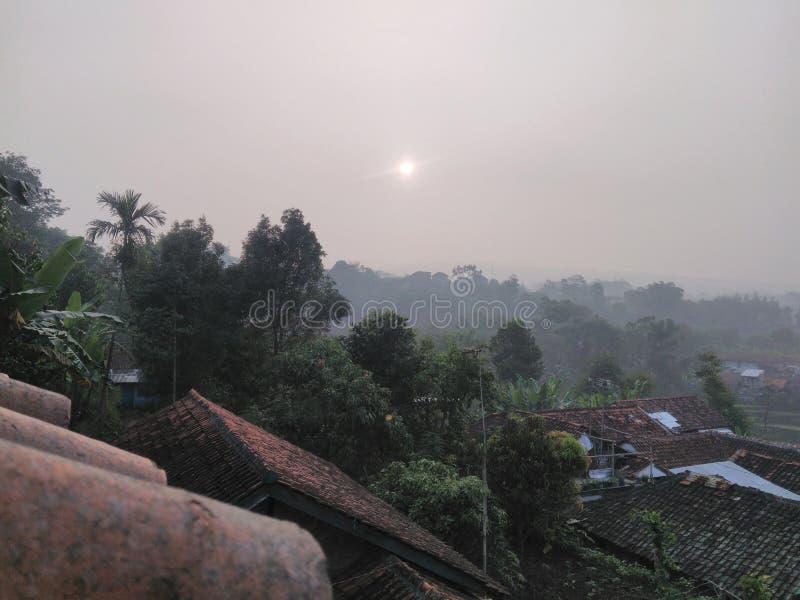 Słońce wzrost przy dachem zdjęcia stock