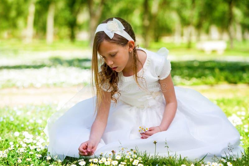 Słodka dziewczyna w biel sukni zrywania kwiatach. obraz royalty free