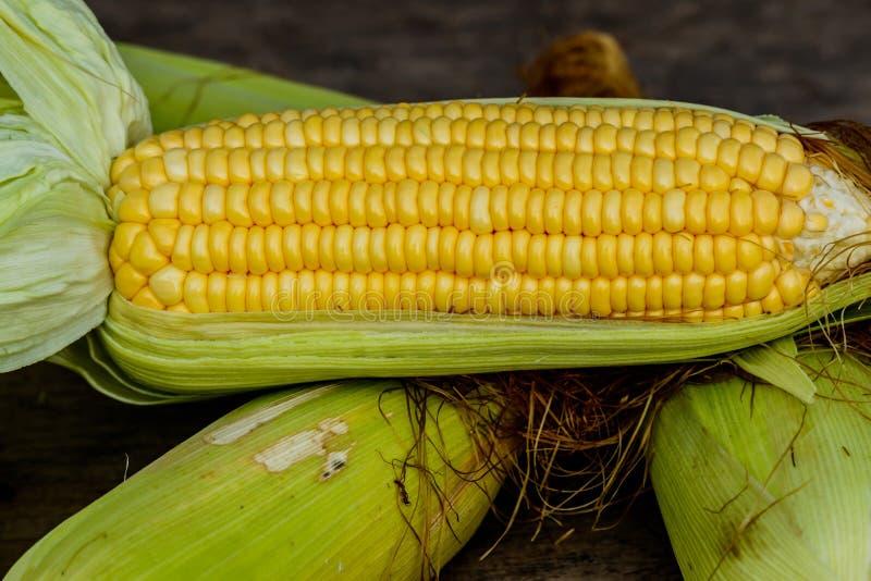 Słodka kukurudza z niektóre ucho stronniczo oplewionymi fotografia stock