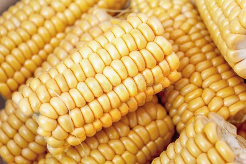 Słodka yelow kukurudza w zakończeniu w górę fotografia stock