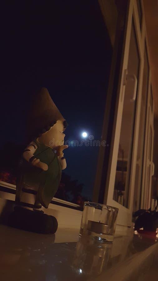 Słodki buziak księżyc zdjęcie royalty free