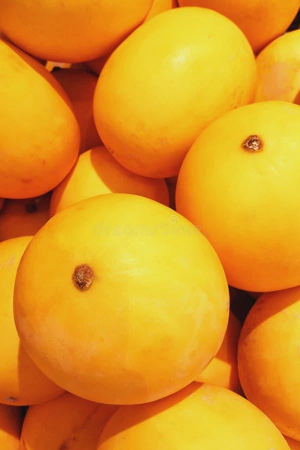 Słodki i soczysty melon obrazy stock