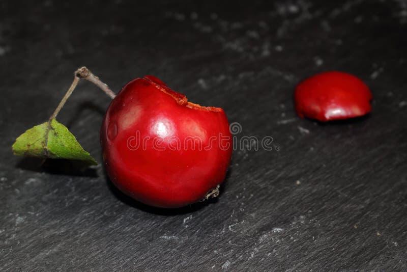 Słodki jabłko dla Śnieżnego bielu obraz stock
