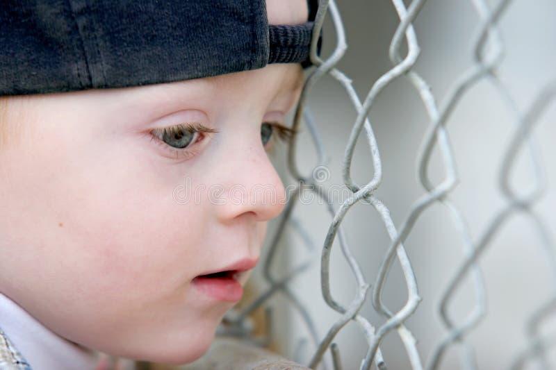 słodkie płotowi chłopca na young obraz stock