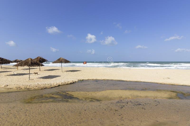 Słomiane chałupy na plażach obrazy royalty free
