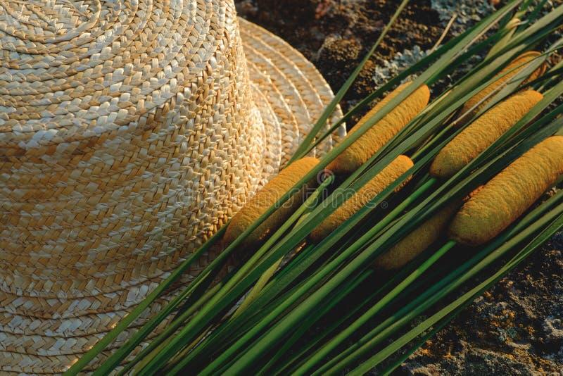 Słomianego kapeluszu sitowie i jar zdjęcia stock