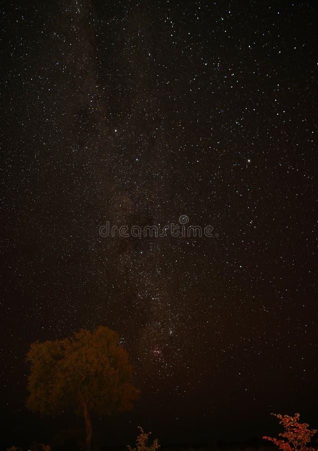 Słoneczna noc w Botswanie w Afryce Środkowej bez zanieczyszczeń świetlnych obrazy royalty free