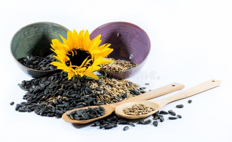 Słonecznik, filiżanki, drewniane łyżki i słonecznikowi ziarna, zdjęcie stock