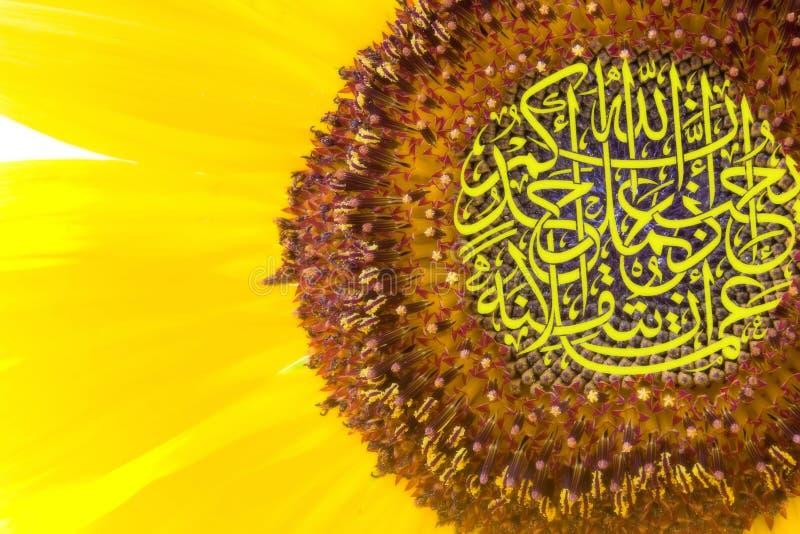 słonecznik kaligrafii obraz stock