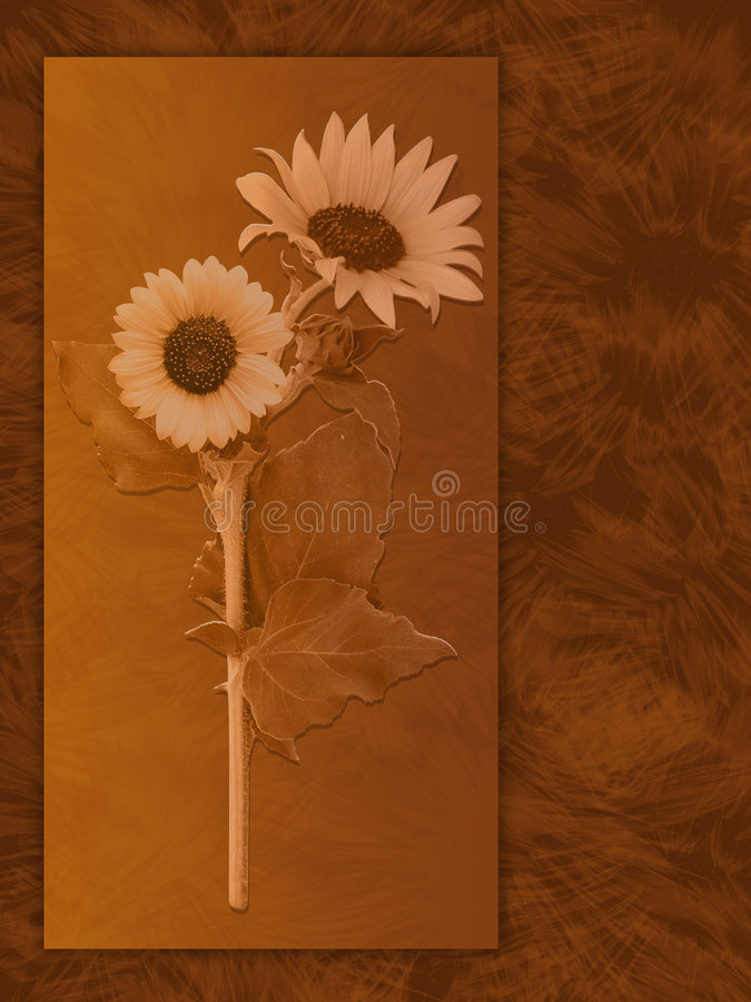 słonecznik tło royalty ilustracja