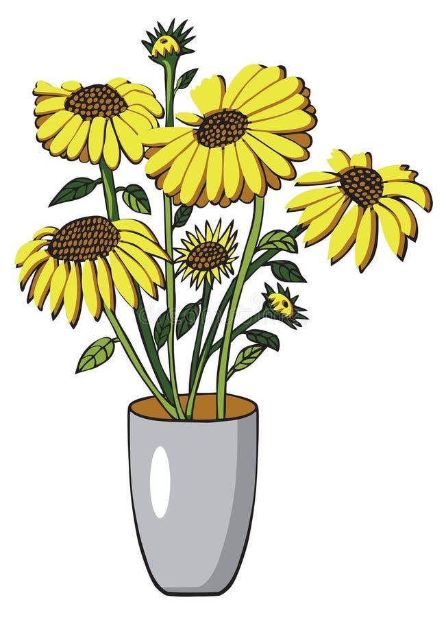 Słonecznik w wazie na bielu ilustracji