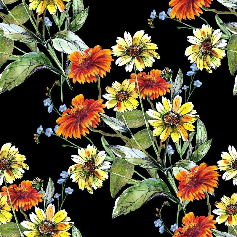 Słonecznika barwiony ołówek na czarnym tle bezszwowy kwiecisty wzoru ilustracja wektor