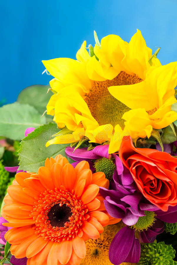 Słonecznika i Gerbera kwiaciarni kwiaty, zamykają w górę szczegółu zdjęcie royalty free