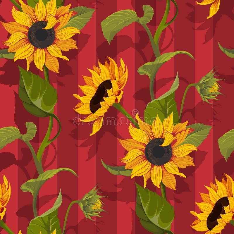 Słonecznikowa wektorowa bezszwowa deseniowa kwiecista tekstura na czerwieni paskuje tło royalty ilustracja