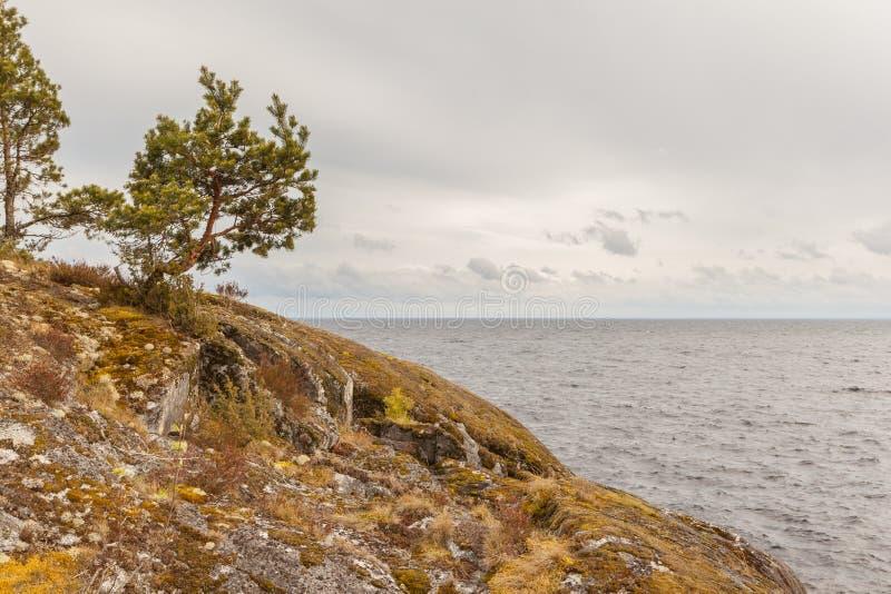 Słoneczny dzień na skalistym brzeg jezioro zdjęcia royalty free