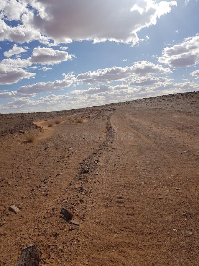 Słoneczny dzień pustynny Texas zdjęcia royalty free