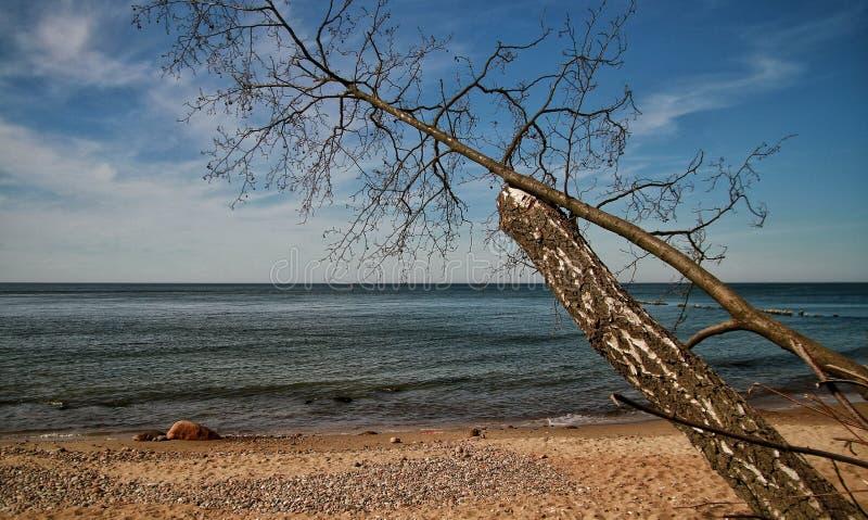 Słoneczny dzień w morzu bałtyckim fotografia royalty free