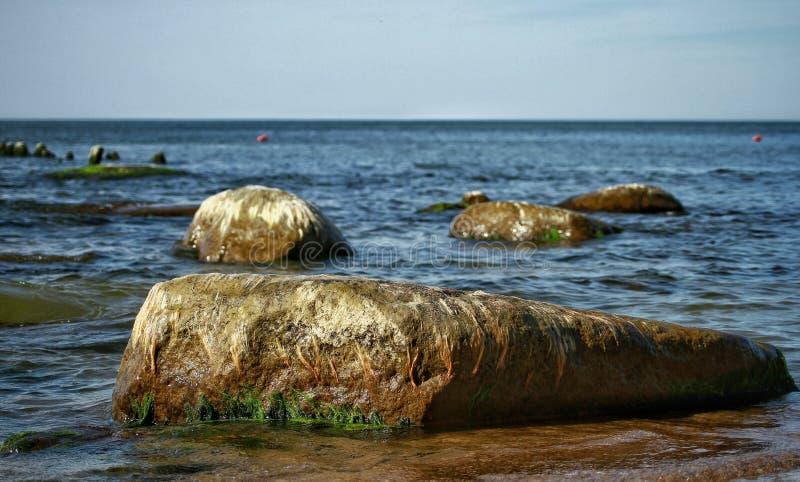 Słoneczny dzień w morzu bałtyckim zdjęcie royalty free