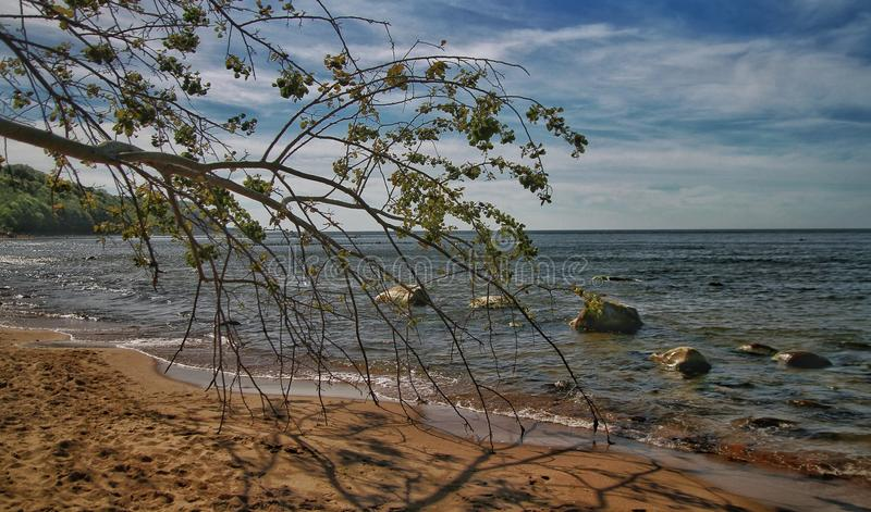 Słoneczny dzień w morzu bałtyckim zdjęcia stock