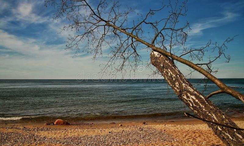 Słoneczny dzień w morzu bałtyckim obraz stock