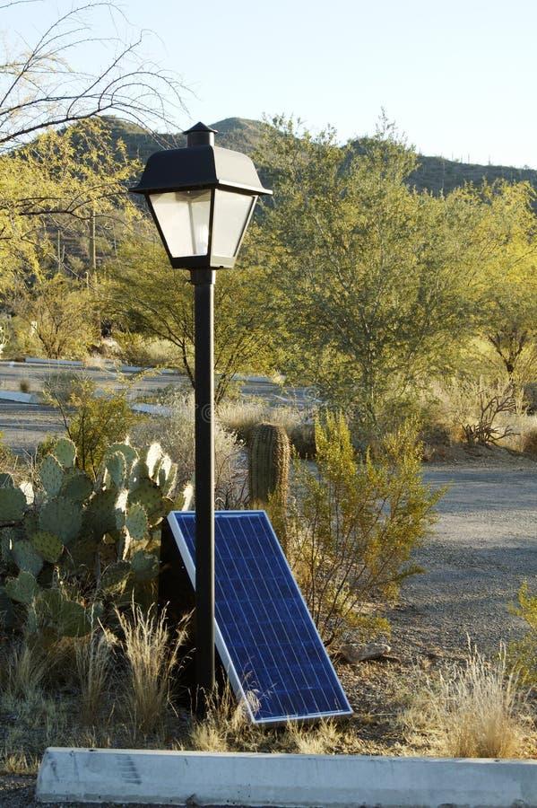 słoneczny kasetonuje obraz royalty free