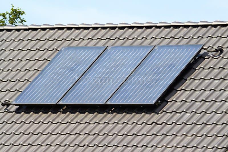 Słoneczny poborca zdjęcie stock