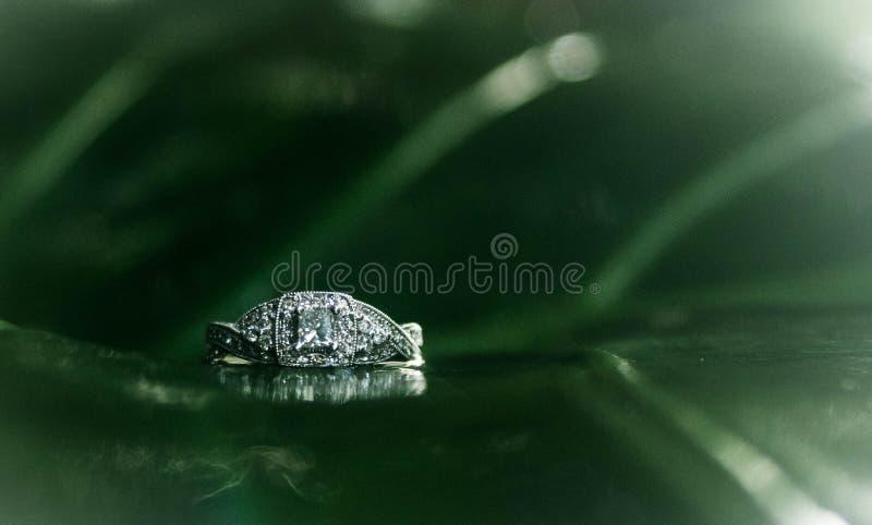 Słoni diamenty obraz royalty free