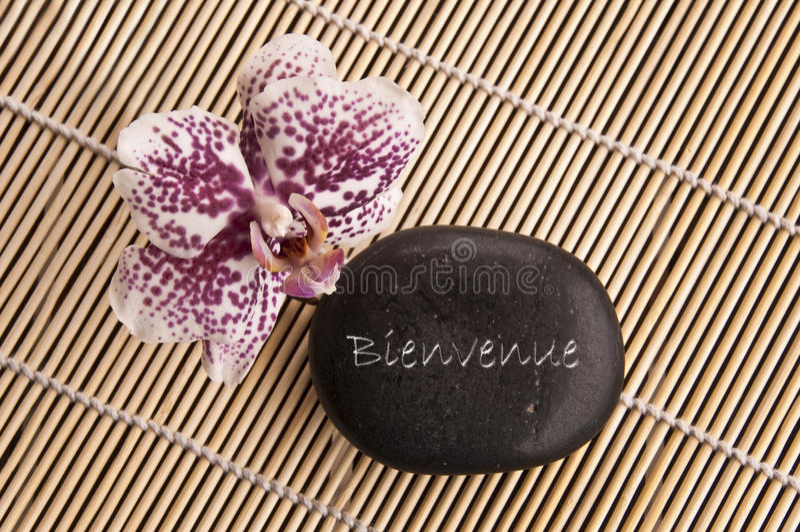 Słowa Bienvenue znaczenia powitanie w Francuskim pisać na czarnym kamieniu z orchideą zdjęcia stock
