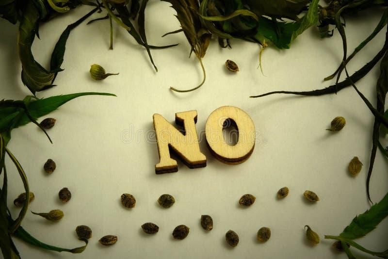Słowo ŻADNY kłaść z drewnianych listów Suszy liście i adra marihuana w postaci ramy na białym tle Vignet obraz royalty free