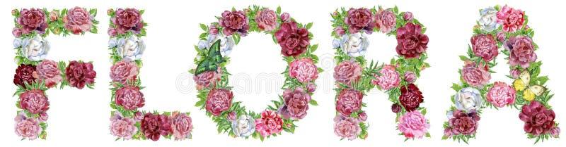 Słowo flora akwarela kwitnie dla dekoracji ilustracja wektor