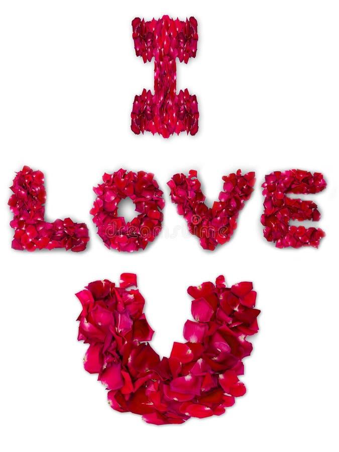 Słowo robić od czerwieni róży miłość fotografia stock