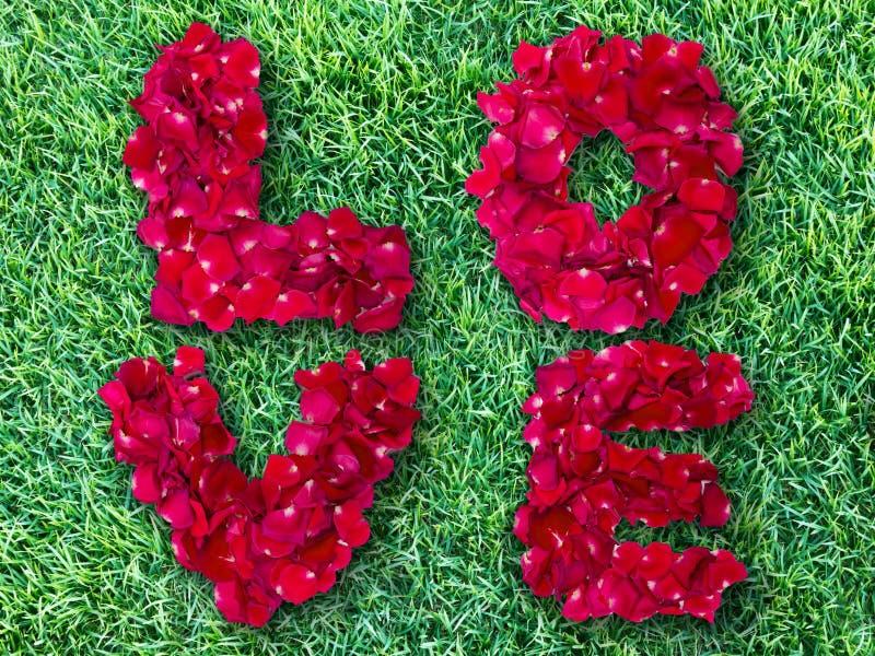 Słowo robić od czerwieni róży miłość zdjęcia royalty free