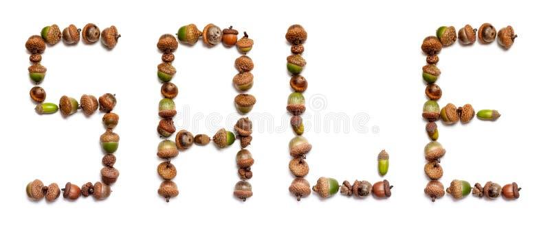 Słowo sprzedaż kłaść z acorns zdjęcie stock