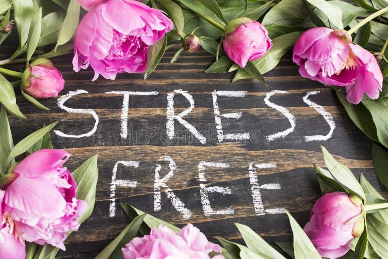 Słowo stres Uwalnia z Różowymi peoniami fotografia stock