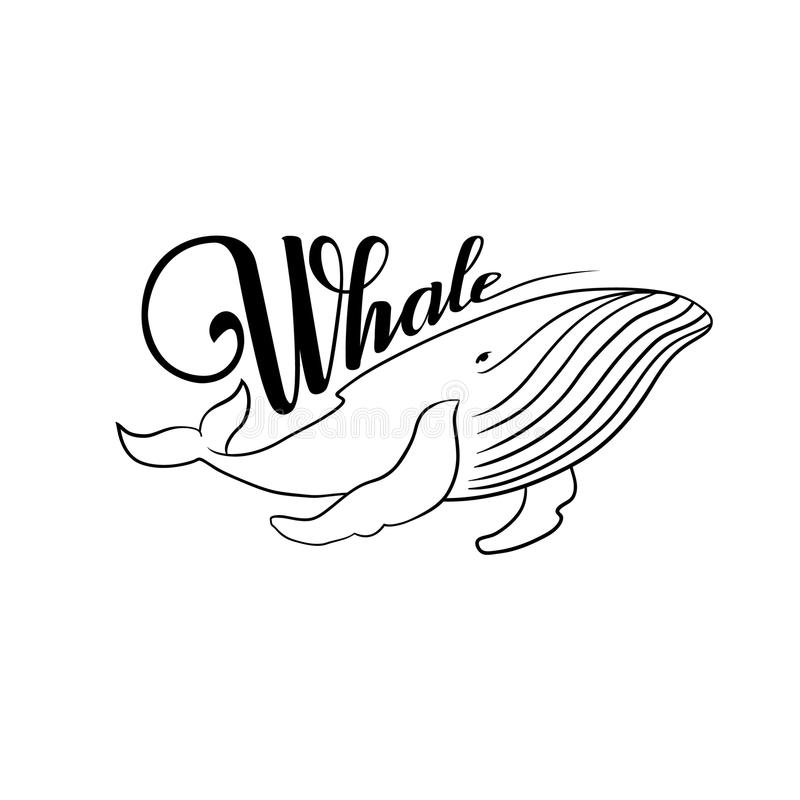 Słowo wieloryb Wieloryb czarny i biały royalty ilustracja
