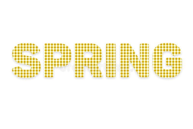 Słowo wiosna na białym tle Tło tekst składa się żółtych kwiaty przeciw tła pojęcia kwiatu wiosna biały żółtym potomstwom obrazy stock