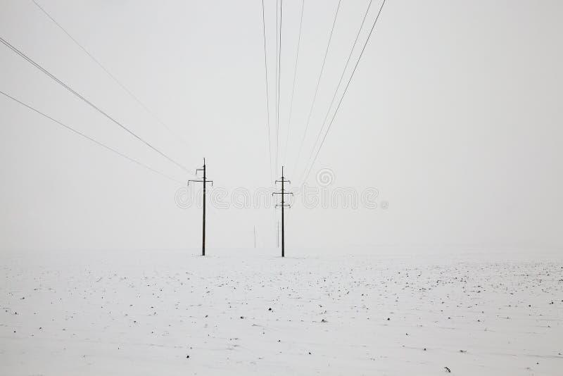 Słupy z elektrycznymi liniami fotografia stock