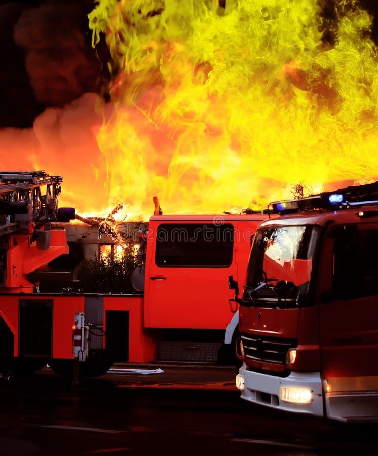 Download S'éteindre Le Grand Incendie Image stock - Image du usine, usines: 8672857