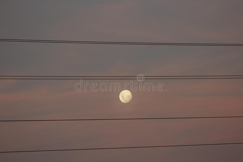` S луны Argentineans и флаг проводов стоковые изображения rf