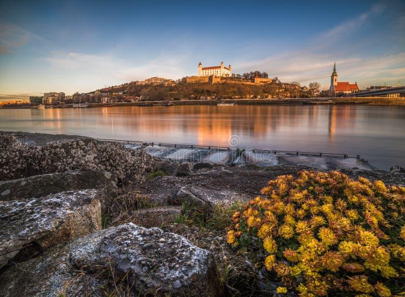 布拉索夫城堡和圣马丁的大教堂 免版税库存图片