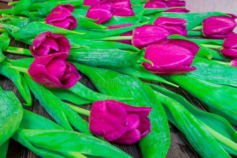 Цветочный узор сделанный розового тюльпана, зеленых листьев, ветвей на черной предпосылке стоковое изображение rf