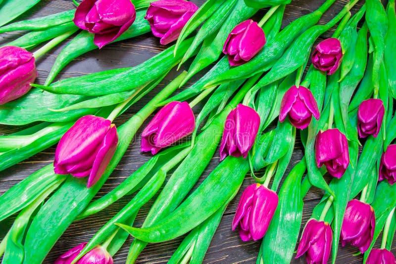 Цветочный узор сделанный розового тюльпана, зеленых листьев, ветвей на черной предпосылке стоковые изображения rf