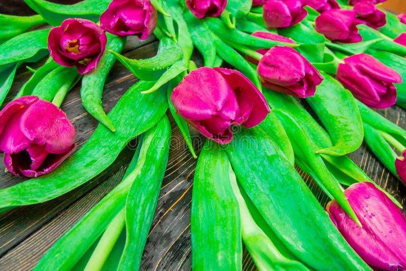Цветочный узор сделанный розового тюльпана, зеленых листьев, ветвей на черной предпосылке стоковое фото