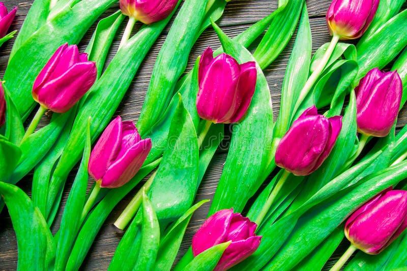 Цветочный узор сделанный розового тюльпана, зеленых листьев, ветвей на черной предпосылке стоковое фото rf