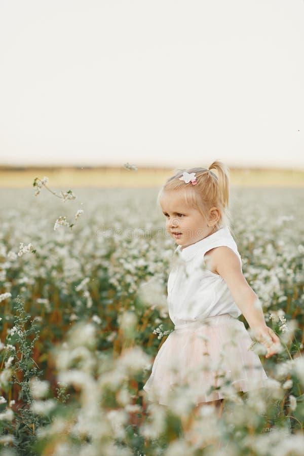Портрет детей девушки красивая девушка в цветя поле Поле одуванчика игры маленькой девочки весной стоковое фото rf
