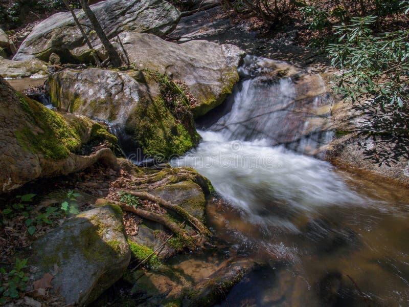 Каскады под падениями заводи вдовы на каменный парк штата горы стоковая фотография